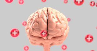 Najjednostavniji način za jačanje mentalne snage i memorije: Da li znate šta je neurobik?