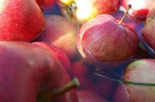 Voće, Ne pravite ovu ogromnu grešku: Ovo voće i povrće nikako ne treba guliti, evo i zašto!, Gradski Magazin