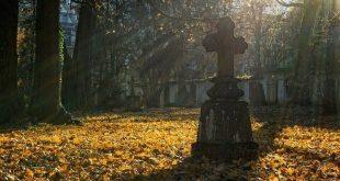 OPREZ OKO STARIH SPOMENIKA: Zbog Zadušnica, ulaz automobilima na sva groblja u Beogradu zabranjen do 15 sati